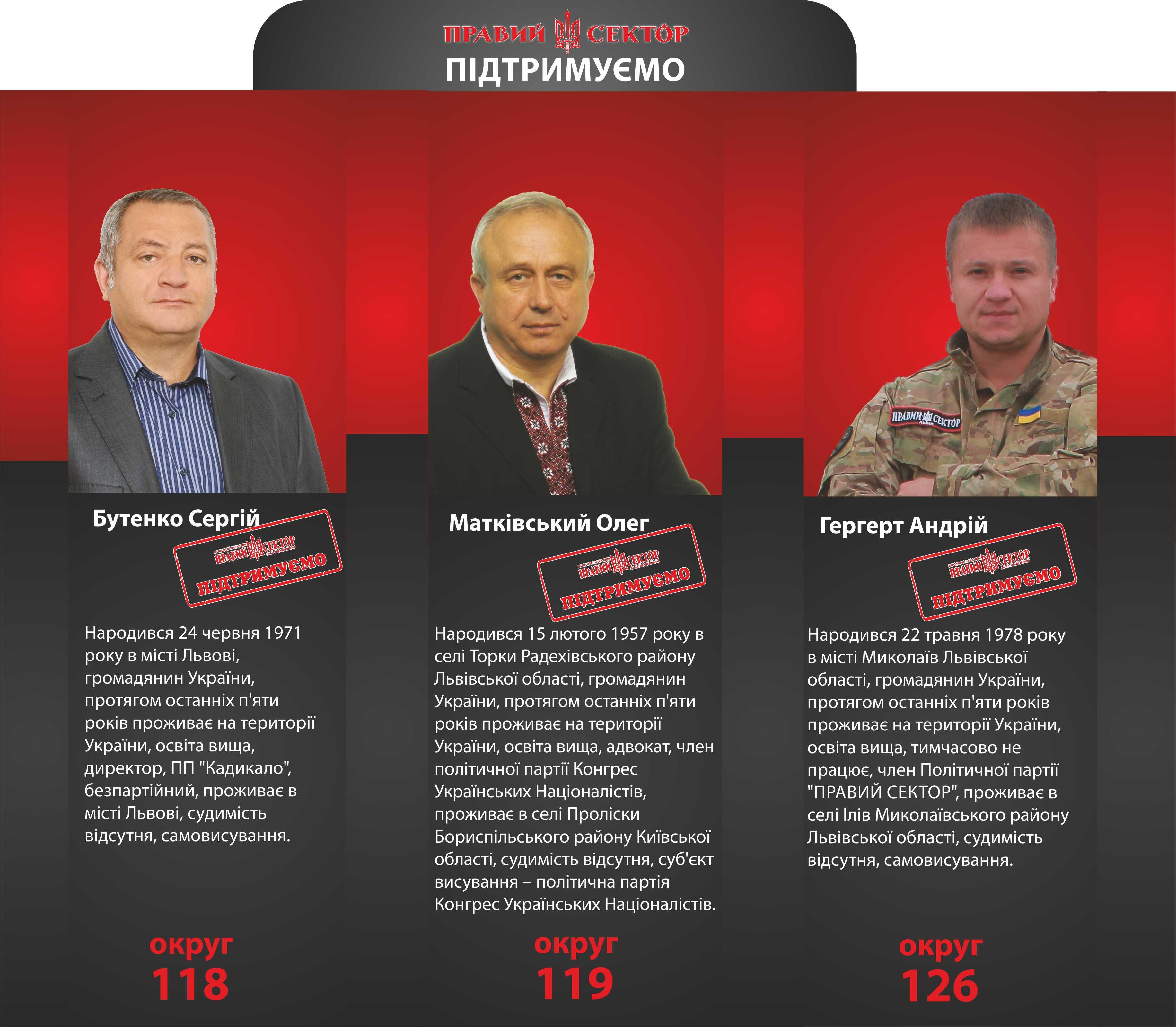 «Правий сектор» на виборах до парламенту підтримує кількох кандидатів зі Львівщини
