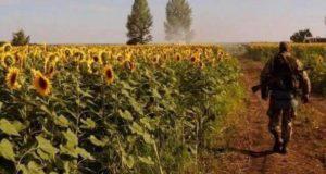 ІЛОВАЙСЬКИЙ КОТЕЛ: вторгнення російських військ та зрада українського командування