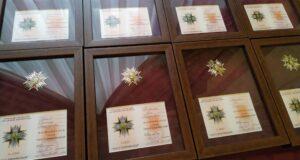 «Об'єднання добровольців» відзначило орденом бійця з Сум Олександра Красія